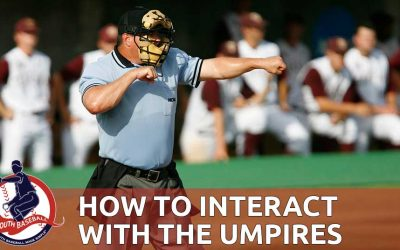 Interacting With Baseball Umpires